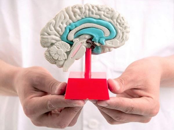 Costo-visita-neurologica-modena
